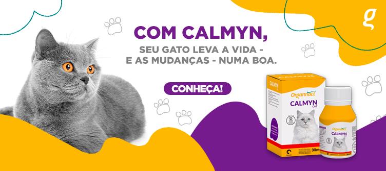 Com Calmyn seu gato leva a vida - e as mudanças - numa boa.