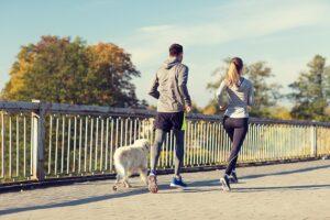 Cachorro fazendo exercícios físicos com seus donos