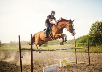 Como a suplementação auxilia na recuperação da musculatura do cavalo?